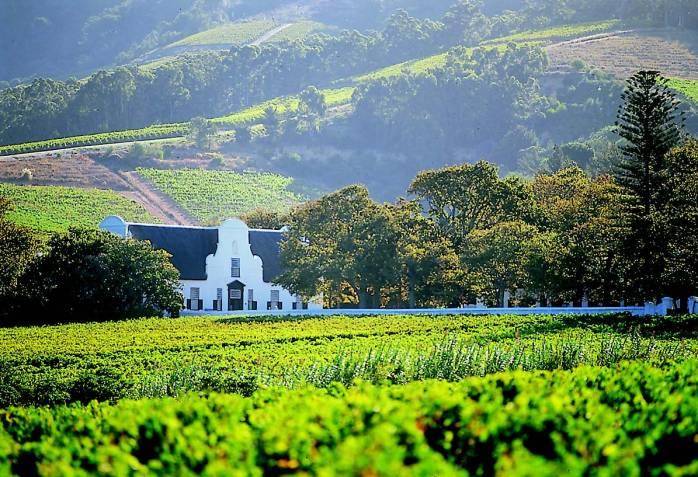 Cape-Winelands